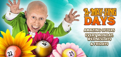 A-May-Zing Offers at bgo Bingo
