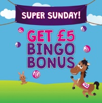 £5 Bingo Bonus on Super Sundat at Bucky Bingo