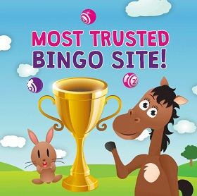 Bucky Bingo Ranked Highest on Trust Pilot