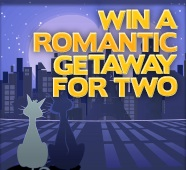 Romantic Getaway for Two at Kitty Bingo
