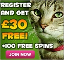 300% Welcome Bonus at Kitty Bingo