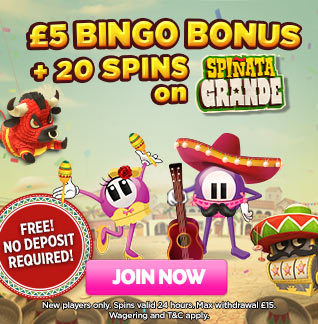 No deposit bonus and FREE spins at Luckypanys Bingo