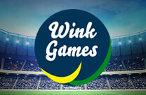 Olympic Wink Games
