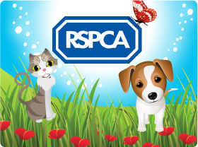Play Bingo at Jackpot Joy and Support the RSPCA